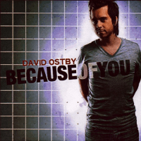 BECAUSE OF YOU CD - DAVID OSTBY