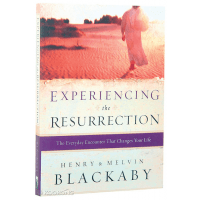 EXPERIENCING THE RESURRECTION - THE EVERYDAY ENCOUNTER THAT CHANGES YOUR LIFE
