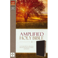 Anglais, Bible, Amplified, Fibrocuir noir et onglets - Amplified Thinline Holy Bible--bonded leather, black (indexed)