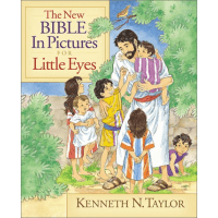 NEW BIBLE IN PICTURES FOR LITTLE EYES (THE) - RELIE